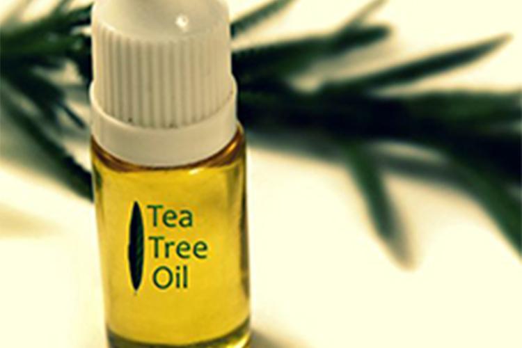 9 کاربرد روغن درخت چای